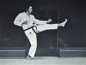 Tongbei influence on Karate!