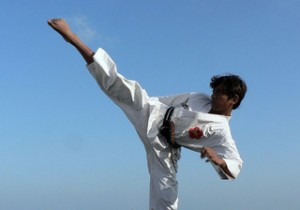 online karate course
